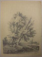 Friedrich R. MEYER (1807 Dresden 1882), Baum am Ufer mit Kühen, 1845