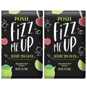 *2* NEW & SEALED Perfectly Posh Fizz Me Up Before You Go Go Chunk Soaps