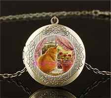 Vintage Pretty Cat Photo Cabochon Glass Brass Locket Pendant Necklace