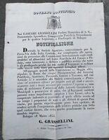 1853 11) ECCEZIONALE MANIFESTO SULLA COSTRUZIONE STRADA FERRATA PANARO - PISTOIA