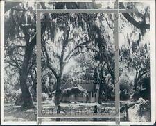1929 Christ Church Frederica Sea Island GA Shrouded in Spanish Moss Press Photo