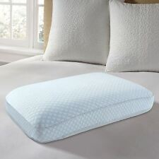 EUROPEUDIC? Big & Soft Cooling Gel Ventilated Memory Foam Gel Pillow with 2""