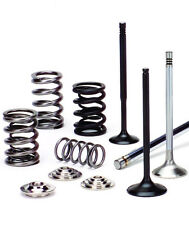 Supertech Valves + Springs Retainers Kit Audi VW 1.8T 20V AEB A4 TT Golf Jetta