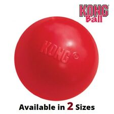 KONG Ball Classic (2 Sizes: Small, Medium/Large) - Puppy Dog Rubber Fetch Toy