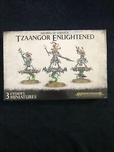 Disciples of Tzeentch: Tzaangor Enlightened/ Skyfires, Warhammer AoS *NEU & OVP*
