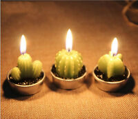 New Cactus Candles for House Decor Birthday Party Wedding Xmas Scented Candle