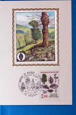 ORME DE MONTAGNE   ARBRE  FRANCE  CPA Carte Postale Maximum  Yt 2385 C