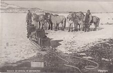 Very rare, sought after, Early 1900's vintage postcard, Polar Expedition