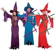sorcière violette avec decolleté taille 40/42 deguisement costume halloween fete