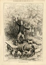 More details for border terriers hunting with otterhound dogs antique art print engraving - 1881