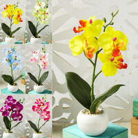 Silk Artificial Fake Orchid Flower Potted Plant Bonsai Party/Garden/Home NEW