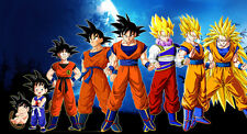 Dragon Ball Z OVER 1 METER WIDE 1 PIECE NOT SECTIONS XXL Glossy Poster Art Print
