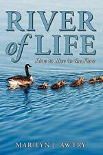 River of Life - How to Live in the Flow by Marilyn J. Awtry (2011, Paperback)