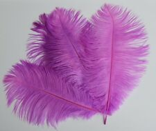 Ostrich Feathers (Pack of 6) Lilac coloured Feathers 25 cms to 32 cms