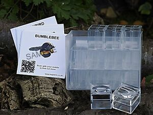 Magnifying Bug Pots (PACK of 24)- Mini Bug Pots With Case & FREE SPOTTER CARDS!