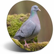 Awesome Fridge Magnet - Stock Dove Pigeon Bird Racing Birds Cool Gift #24261