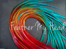 Feather Hair Extensions Multi Color Rainbow Tye Dye medium Length 10 Pc Lot7