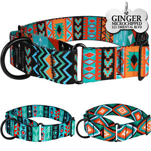Martingale Dog Collar Personalized ID Tag Nylon Safety Training Collars for Dogs
