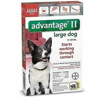 Bayer Advantage II Large For Dogs 21 - 55 lbs. lb - 6 doses