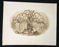 Wenzel Hablik, Baum, Radierung aus dem Nachlass, 1980, Nachlassstempel
