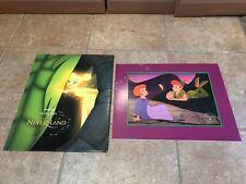 WALT DISNEY STORE 2002 PETER PAN IN RETURN TO NEVER LAND LITHOGRAPH & ENVELOPE!!
