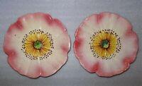 paire d' assiettes en barbotine - fleur d'églantine - orchies - onnaing ?