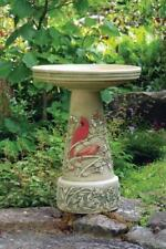 Birds Choice Bcscset Clay Summer Cardinal Bird Bath