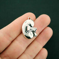 2 Kidney Charms Antique Silver Tone - SC6826