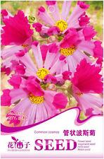 Original Package 50 Common Cosmos Seeds Cosmos Tubular Calliopsis Flowers A179