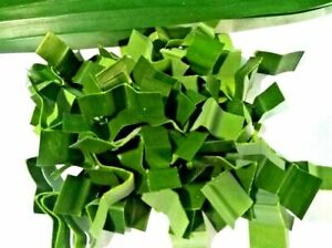 Pandan Leaf Wholes  20g , Organic, 100 % Kitchen spices Green