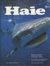 Haie - Biologie und Verhalten, Gefahren durch Haie und Erlebnisse mit Haien