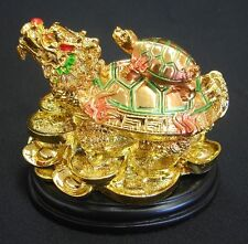 Chinese Dragon Turtles