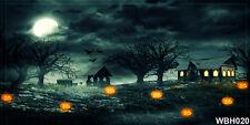 Halloween 20'x10' Computer/Digital Vinyl Photo Wide Backdrop Background WBH020