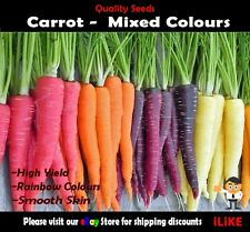 "BULK Carrot ""HEIRLOOM"" Mixed Colours. 500 Seeds Minimum. Vegetable Garden Plant"