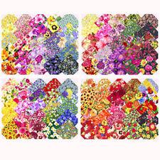 Timeless Treasures Handarbeitsstoffe mit Blumenmuster aus 100% Baumwolle