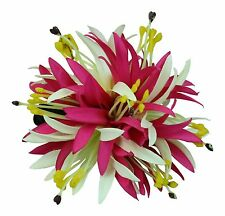 Hawaii Hair Clip Lei Luau Competition Flower Dance Large Spider Lily Pink White