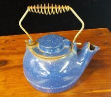 Vintage Cast Iron Teapot Kettle Tea Pot with Spiral Coil Handle Blue Enamal