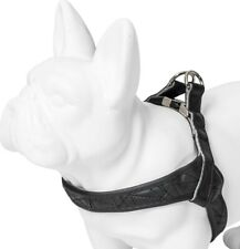 Karl lagerfeld Pets Dog Soft Chest Harness Dog Harness Weatherproof XS