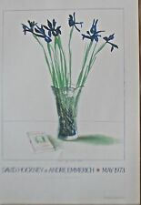 David Hockney Mini  Poster Reprint for The Andre  Emmerich Gallery NYC 16x11 PP