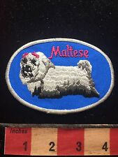 Vtg Souvenir MALTESE DOG Breed Patch ~ Animal Pet Lover Collectible 73X7