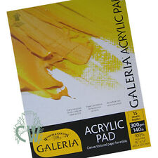 "Winsor & Newton Galeria Acrylic Paper Pad 300g 16""X12"". Artists Acrylic Painting"
