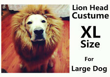Dog COSPLAY Lion hat Cute Lion Mane Wig Head Warm Hat For Large Dog