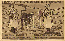 postcard - why the natives are called isle of wight calves !