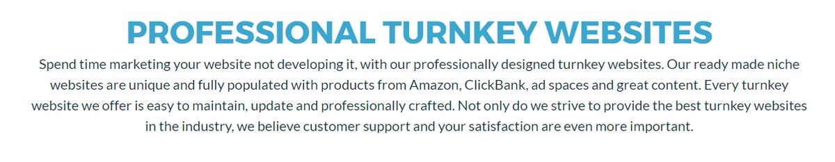 Established Turnkey Websites To Buy