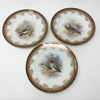 "Vintage SAXON China Bird Cabinet Plates Geese Pheasant Pigeon Guinea 8"" Set of 3"