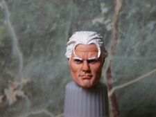 HEAD ONLY Marvel Legends Custom painted head Magneto PAINTED HEAD ONLY