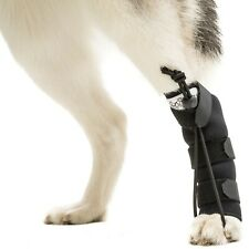 Walkin' Rear No-Knuckling Training Sock for Dogs | Help Dogs Pick Up Their Feet