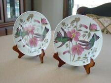 "Pair of Audubon Columbia Hummingbird Plates 7.5"" Godinger Bird Porcelain Dishes"