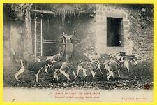 cpa SAINT SEVER CALVADOS Chasse Chiens HALLALI d'un CERF au Village des CARREAUX