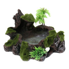 Plant Moss Decor Reptile Water Feeder Tortoise Gecko Bearded Dragon Water Dish